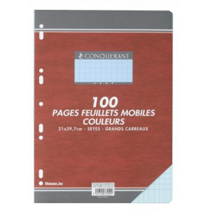 100 FEUILLETS MOBILES- FEUILLES SIMPLES A4 SEYES BLEU 80G PERFOREES