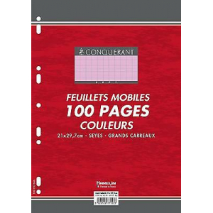 100 FEUILLETS MOBILES- FEUILLES SIMPLES A4 SEYES ROSE 80G PERFOREES